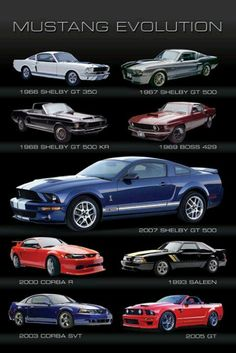 #CarEvolution #FordMustang ⚡️Get Tons of Free Traffic and Followers On Autopilot with Your Instagram Account⚡️ http://instautomator.com  Follow my Friends Below Follow ➡️@Health.fitness.motivation_ ➡️@Health.fitness.motivation_ Follow ➡️ @must.love.animals ➡️ @must.love.animals Follow ➡️@inspiration.and.quotes ➡️@inspiration.and.quotes