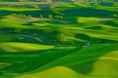 Rolling Palouse in Spring by Perri Schelat - Photo 6939023 - 500px