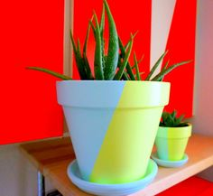 Create Your Own Two-Tone Painted Pots With This Easy DIY Project