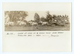 Side view of horse team and wagon with band on top. Close up of 8 horse team band wagon / Ringling Bros - 1884