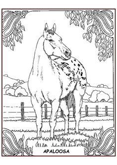 coloring page horses kids n fun