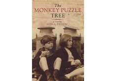 FICTION: The Monkey Puzzle Tree by Sonia Tilson (Biblioasis)