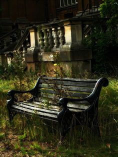 and the abandoned bench