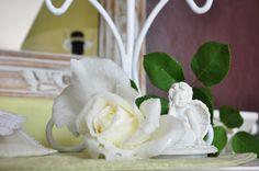 Ma rose mon ange