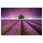 Obraz Szklany Glasspik Lawenda 120 X 80 Cm Styler Sunset Landscape Summer Landscape Beautiful Nature Wallpaper