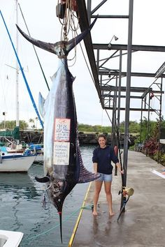 Angler shakes off seasickness, catches monstrous blue marlin - Shame on her for bringing it in. Killing such a magnificent giant should be a crime. Fishing 101, Fishing Boats, Fly Fishing, Kona Hawaii, Blue Marlin, Offshore Fishing, Shake It Off, Big Fish, World Records