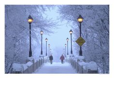 Picture of Winnipeg Manitoba, Canada Winter Scenes stock photo, images and stock photography. Canada Winter, Winter Szenen, Winter Time, Canada Snow, Winter Walk, Winter Magic, Winter Travel, Winter Holidays, Street Lamp