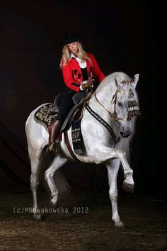 Purebred Espanola Yeguada Herrera Spanish Horses Horses Dancers Andalusian … – Art Of Equitation Dressage, Lipizzan, Andalusian Horse, Horse Trailers, Horses For Sale, White Horses, Horse Girl, Horse Breeds, Show Horses