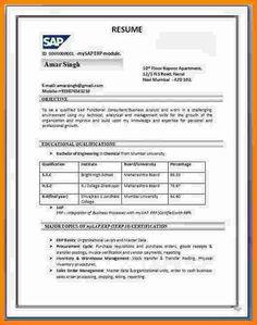 resume format india resumeformat