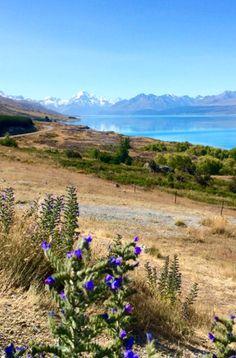 Wunderschöner Ausblick auf Lake Pukaki, Südinsel Neuseeland