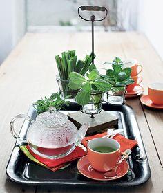 Que tal trocar os tradicionais saquinhos por ervas bem frescas, como hortelã, capim-cidreira e boldo? Na hora de acomodar as folhas, use a criatividade: aqui, elas foram colocadas em um porta-velas com suporte de ferro | tea time | herbal tea | Foto: Rogério Voltan/Casa e Comida