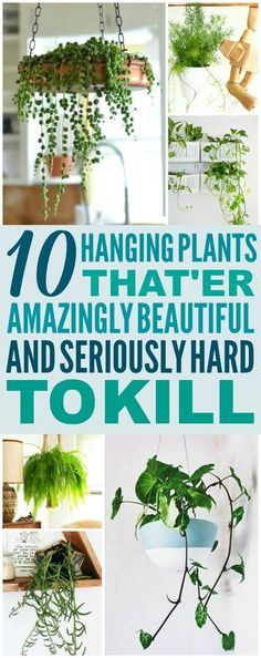 These 10 Low Maintenance Hanging Plants are THE BEST! I'm so glad I found these AMAZING ideas! Now I have a great way to decorate my home and not kill the plants! Definitely pinning! #gardeningindoors