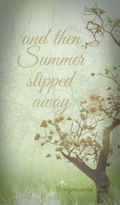 As Summer begins to fade...