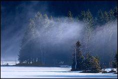Sapins surplombant le Lac de Lispach, La Bresse, Vosges, France Alsace Lorraine, France, Niagara Falls, Snow, Places, Nature, Photos, Travel, Landscape Photography