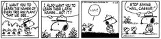 This strip was published on April 25, 1979. Snoopy and Woodstock.