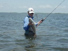 Learn the most effective saltwater fishing lures to have in your arsenal in your quest for success. Saltwater Fishing Gear, Fishing 101, Best Fishing, Kayak Fishing, Fishing Boats, Catfish Fishing, Randal, Fishing Supplies, Learn To Surf