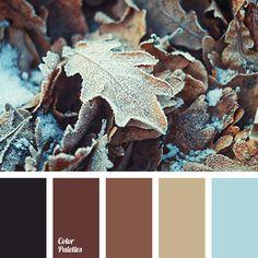almost black, beige, Blue Color Palettes, brown, decoration color selection, light blue, oak leaf color, pale white, pastel shades of brown, repair color solution, shades of brown, wood color.
