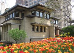 Rent one of Chicago's most historic Frank Lloyd Wright homes