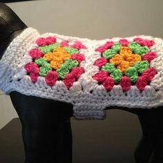 69 ideas crochet granny square animal dog sweaters for 2019 Cute Crochet, Crochet Crafts, Crochet Projects, Knit Crochet, Unique Crochet, Crochet Dog Clothes, Crochet Dog Sweater, Crochet Granny, Crochet Stitches