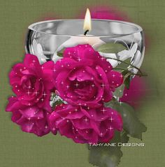 animated rose and waterfall Shell Candles, Red Candles, Candle Lanterns, Beautiful Gif, Beautiful Candles, Beautiful Flowers, Gifs, Roses Gif, Glitter Pictures