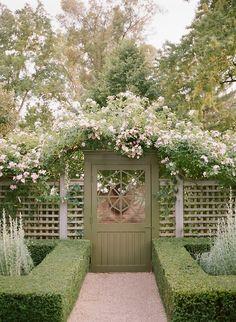 Gate with arbor and trailing greenery, neatly trimmed hedges holding back shrubbery