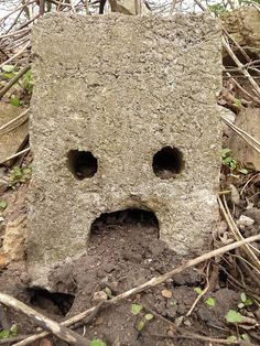 Nature Face