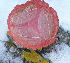 Natural Leaves on Papier mache Bowl Red by PaperMetamorphosis, €24.00