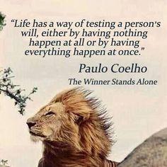 15 Amazing Paulo Coelho Quotes that will change your Life!!