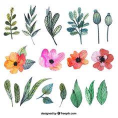 Aquarell-Blumen und Blätter