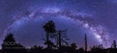 Milky Way and tree panorama in Cuyamaca  Another Milky Way and tree panorama. So many interesting trees along this trail in the Paso Picacho campground in Cuyamaca Rancho State Park. I combined 11 vertical frames to make this image. Shot at f/2.8 25 sec ISO 4000 with my Canon 6D and Sigma 15mm.  Camera: Canon EOS 6D Lens: 15mm Focal Length: 15mm Shutter Speed: 25sec Aperture: f/2.8 ISO/Film: 4000  Image credit: http://ift.tt/29qZY01 Visit http://ift.tt/1qPHad3 and read how to see the…