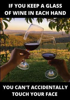 if you keep a glass of wine in each hand you can't accidentally touch your face Funny Pix, Haha Funny, Funny Facts, Funny Signs, Funny Quotes, Funny Pictures, Funny Memes, Hilarious, Smiles And Laughs