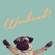 Weekend! We welcome you.