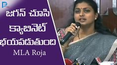 YSRCP MLA Roja, roja press meet, roja press meet ap cabinet, MLC Elections, ycp, tdp, jagan, chandrababu, mlc elections, political, news, breaking news,