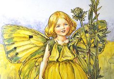 Book of Flower Fairy Illustrated Prints by YellowBeeVintage