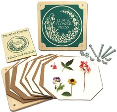 Leaf and Flower Press connects children with nature. Decorate and make bookmarks, greeting cards, candles, and so much more! $21.95