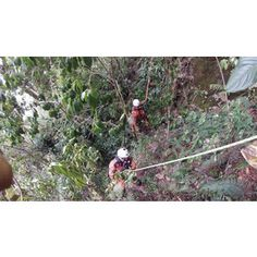Sporen in de jungle van Panama gevonden bij de zoektocht naar Kris Kremers en Lisanne Froon - Nieuws.nl