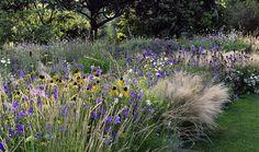 Garten des Monats/Jahres - Startseite -