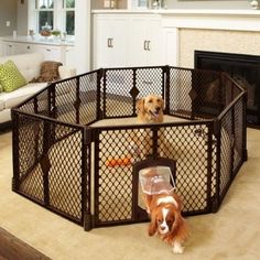North States MyPet Indoor/Outdoor Petyard: Pet enclosure with lockable pet door. Freestanding - Compare and Shop The Best Stuff Best Puppies, Best Dogs, Corgi Puppies, Beauceron Dog, Belle Image Nature, Puppy Playpen, Image Hd, Image Link, Dog Pen