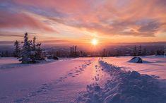 Zima, Zachód słońca, Śnieg, Ślady, Drzewa