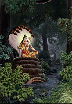 Shivani Namo