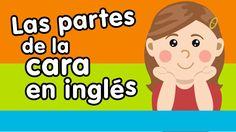 Las partes de la cara en inglés - Canción para niños - Canciones Infanti...