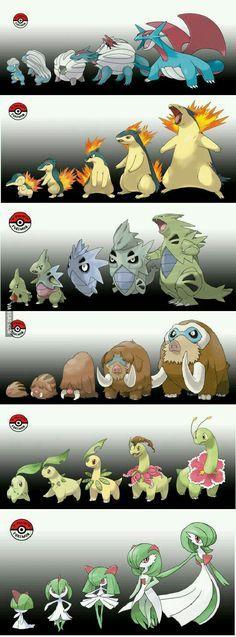 Mas evoluciones