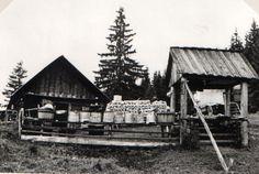 Salaš JRD na Soliskách - fotoarchiv:Ján Zaťko - nedatované