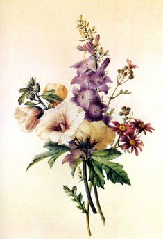 Trendy Ideas For Flowers Bouquet Tattoo Thigh Art Floral, Vintage Botanical Prints, Botanical Art, Bouquet Tattoo, Impressions Botaniques, Illustration Botanique, Vintage Flowers, Vintage Floral, Flower Tattoos