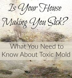 Wondering what all the hype is about toxic mold? If you or a family member are experiencing mysterious symptoms that your doctor can't diagnosis, find out what your environment may say about your health!