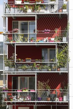 apartment building, collective housing, France, Paris, PHILIPPON KALT Architectes