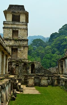 Mayan Ruins of Palnque Mexico