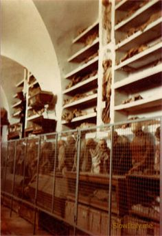 Capuchin Catacombs of Palermo, Sicily