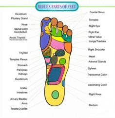Pressure points in feet