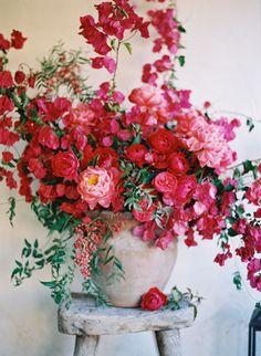 fleurs féériques
